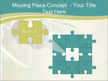 0000087648 PowerPoint Template - Slide 45