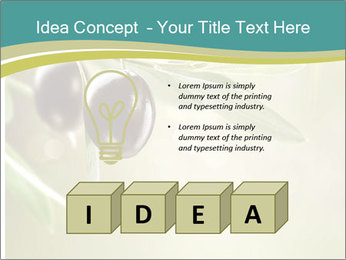 0000087648 PowerPoint Template - Slide 80