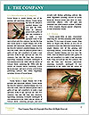 0000087648 Word Template - Page 3