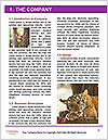 0000087649 Word Templates - Page 3