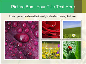 Early morning PowerPoint Templates - Slide 19