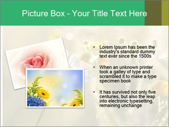 Early morning PowerPoint Templates - Slide 20