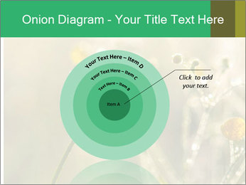 Early morning PowerPoint Templates - Slide 61
