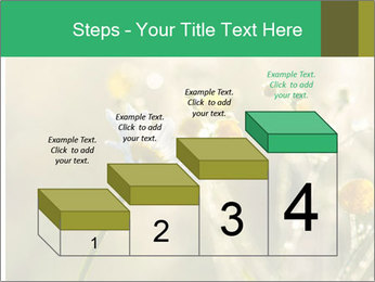 Early morning PowerPoint Templates - Slide 64