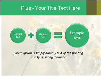 Early morning PowerPoint Templates - Slide 75