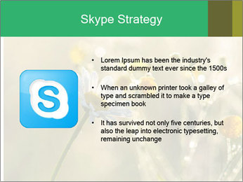 Early morning PowerPoint Templates - Slide 8