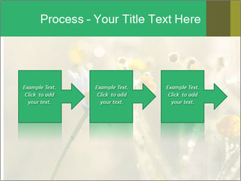 Early morning PowerPoint Templates - Slide 88