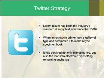 Early morning PowerPoint Templates - Slide 9