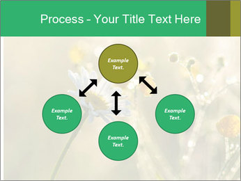 Early morning PowerPoint Templates - Slide 91