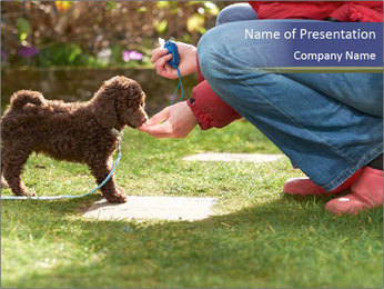 Puppy in the garden PowerPoint Template