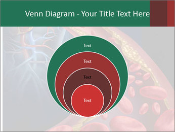 Human artery PowerPoint Template - Slide 34