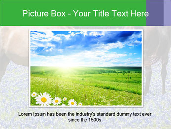 Two horses PowerPoint Template - Slide 15