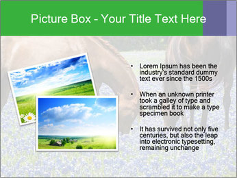 Two horses PowerPoint Template - Slide 20