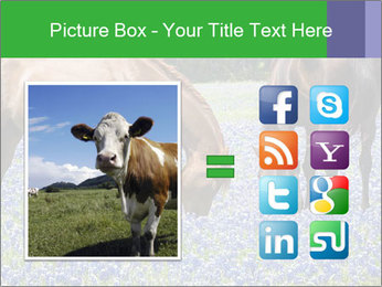 Two horses PowerPoint Template - Slide 21