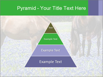 Two horses PowerPoint Template - Slide 30