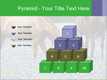 Two horses PowerPoint Template - Slide 31