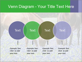 Two horses PowerPoint Template - Slide 32