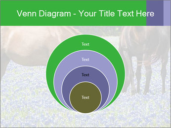 Two horses PowerPoint Templates - Slide 34