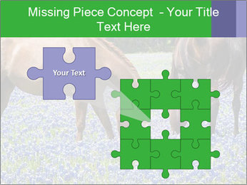 Two horses PowerPoint Template - Slide 45
