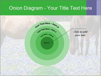 Two horses PowerPoint Template - Slide 61