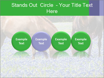 Two horses PowerPoint Template - Slide 76