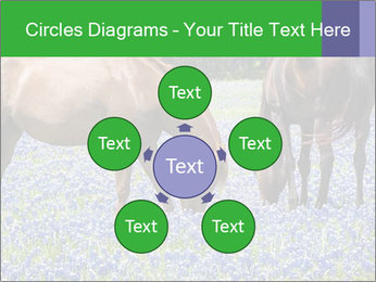 Two horses PowerPoint Template - Slide 78