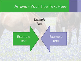 Two horses PowerPoint Template - Slide 90
