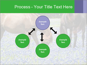 Two horses PowerPoint Template - Slide 91