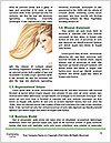 0000087662 Word Template - Page 4