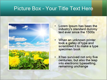 Yellow flower PowerPoint Template - Slide 13
