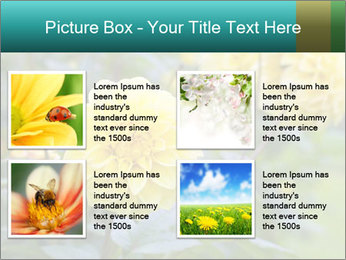 Yellow flower PowerPoint Templates - Slide 14