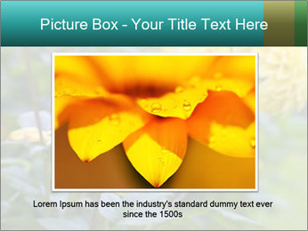 Yellow flower PowerPoint Template - Slide 15