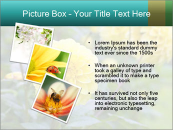 Yellow flower PowerPoint Template - Slide 17