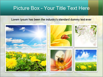 Yellow flower PowerPoint Template - Slide 19