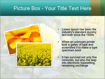 Yellow flower PowerPoint Template - Slide 20