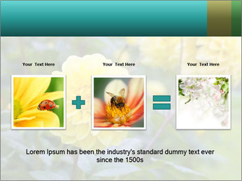 Yellow flower PowerPoint Template - Slide 22