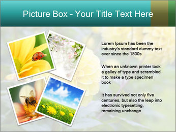 Yellow flower PowerPoint Template - Slide 23