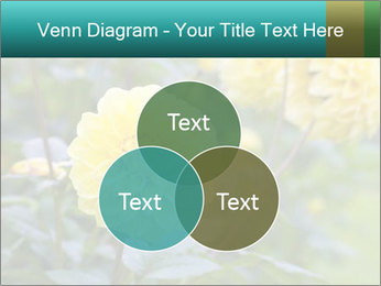 Yellow flower PowerPoint Template - Slide 33
