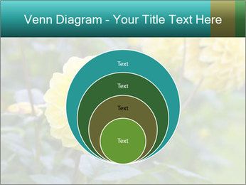 Yellow flower PowerPoint Template - Slide 34