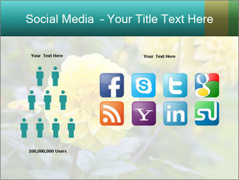 Yellow flower PowerPoint Template - Slide 5