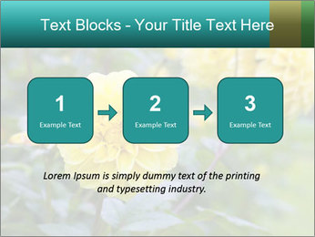 Yellow flower PowerPoint Template - Slide 71