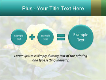 Yellow flower PowerPoint Template - Slide 75
