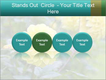Yellow flower PowerPoint Template - Slide 76
