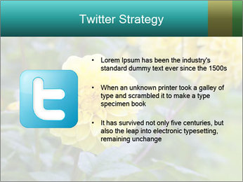 Yellow flower PowerPoint Template - Slide 9