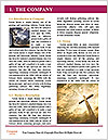 0000087680 Word Template - Page 3