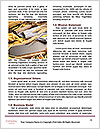 0000087681 Word Template - Page 4