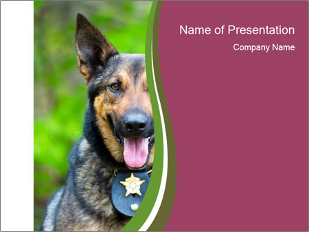 Police dog PowerPoint Templates