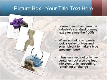 Korean medicine PowerPoint Template - Slide 17