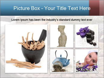 Korean medicine PowerPoint Template - Slide 19