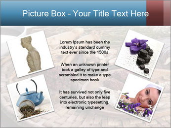 Korean medicine PowerPoint Template - Slide 24